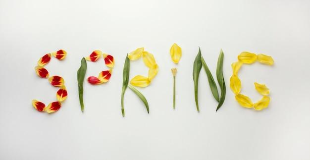 Wiosenne słowo płatków kwiatów