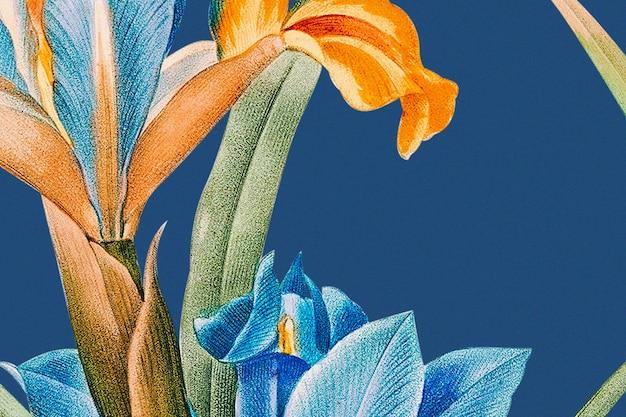 Wiosenne tło kwiatowe z ilustracją tęczówki, zremiksowane z dzieł należących do domeny publicznej