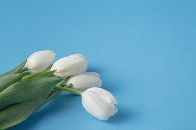 Wiosenny bukiet białych tulipanów
