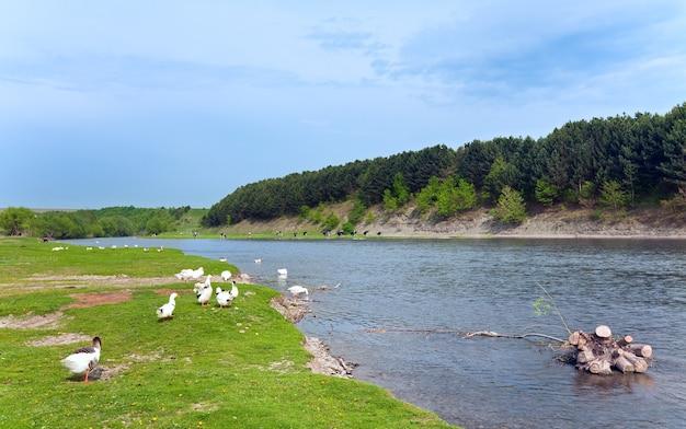 Wiosenny krajobraz kraju z wioską i rzeką