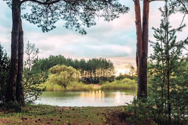 Wiosenny krajobraz zachodu słońca nad rzeką w lesie białorusi.