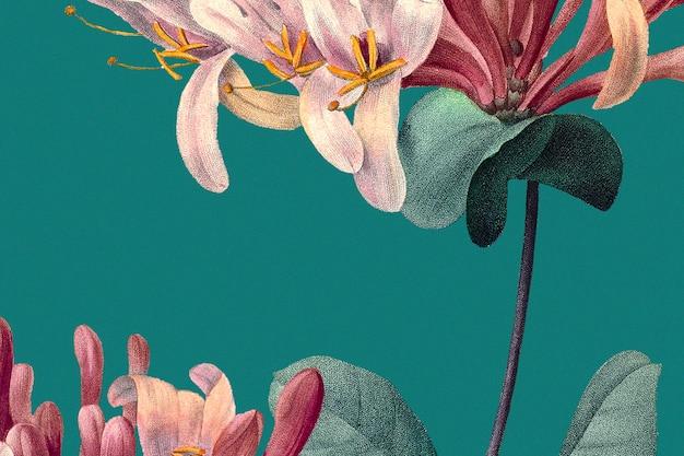 Wiosenny kwiatowy tło z ilustracją wiciokrzewu, zremiksowany z dzieł należących do domeny publicznej