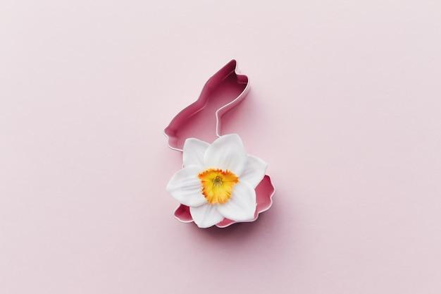 Wiosenny narcyz, króliczek wielkanocny do pieczenia. różowe tło. wysokiej jakości zdjęcie
