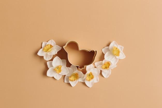 Wiosenny narcyz, ptaszek wielkanocna forma do pieczenia. beżowe tło.