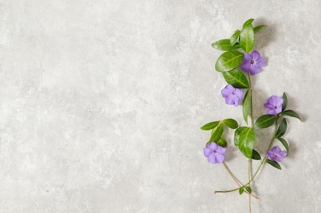 Wiosenny stół w delikatne kwiaty bzu. koncepcja wiosna i natura. skopiuj miejsce.