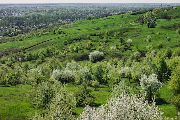Wiosenny widok na okolicę z drogą, wioski kwitnące wiśnie, wzgórza. ukraina.