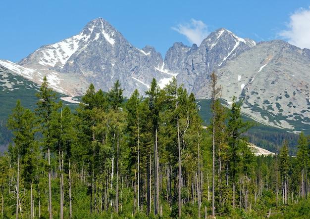 Wiosenny widok na tatry wysokie ze śniegiem na zboczu góry (słowacja)