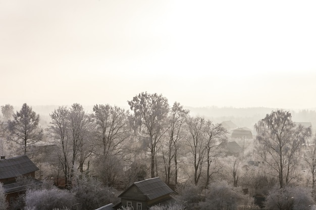 Wioska o mroźnym poranku i drzewa pokryte śniegiem