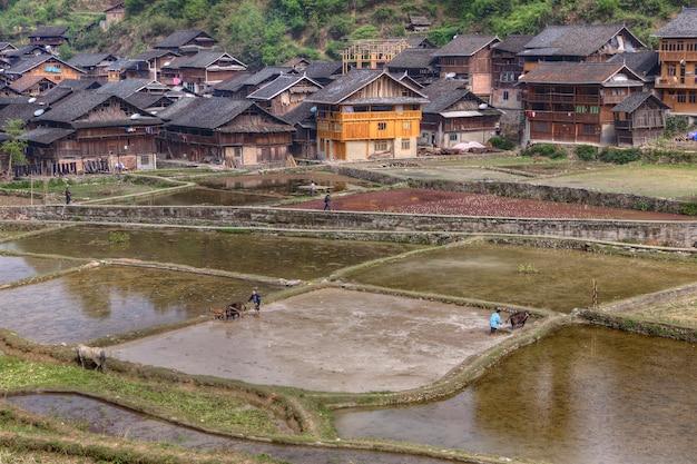 Wioska zhaoxing dong, prowincja guizhou, chiny, wiosenne prace polowe chińskich rolników z górskiej wioski.