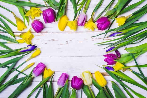 Wiosna biały kwiecisty tło. okrągła rama z kolorowymi tulipanami, żonkilami i irysami obniża się