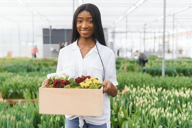 Wiosna i sadzonki. uśmiechnięta dziewczyna afroamerykanka w fartuchu niesie pudełko z młodymi roślinami na tle kwiatów we wnętrzu szklarni