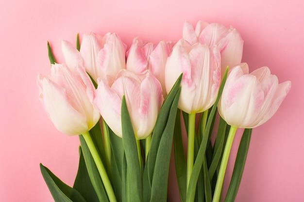 Wiosna kwiat różowe tulipany na różowo