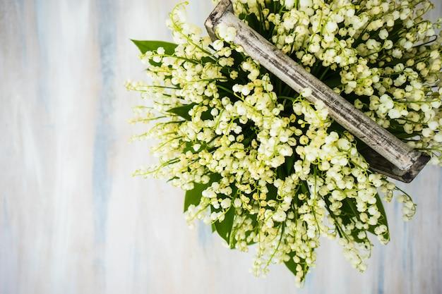 Wiosna kwiatowy