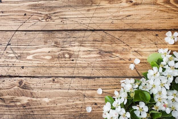 Wiosną kwitnąca gałąź na drewnie