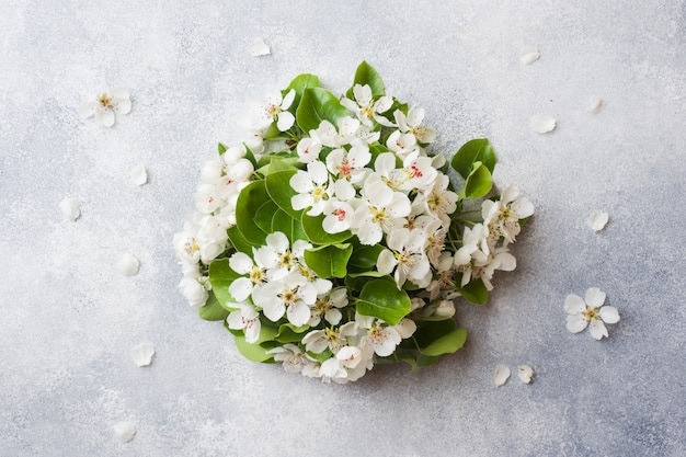 Wiosną kwitnąca gałąź na szarość