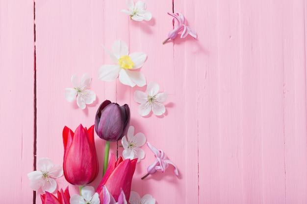Wiosna kwitnie na różowym drewnianym tle