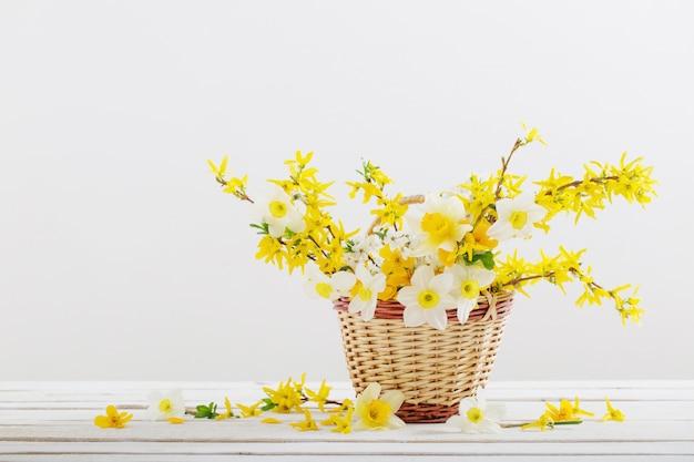 Wiosna kwitnie w koszu na białym tle