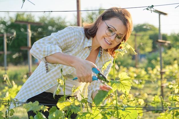 Wiosna plenerowy portret pracuje w winnicy kobieta