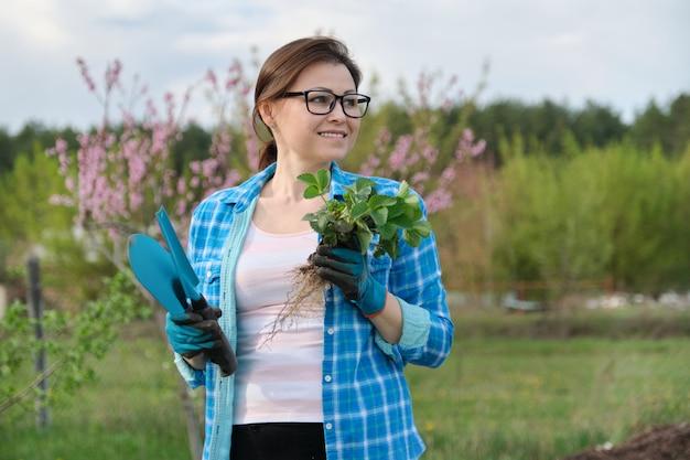 Wiosna portret dojrzała kobieta w ogródzie z narzędziami, truskawkowi krzaki.