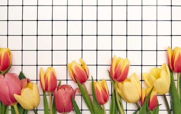 Wiosna tle kwiatów z miejsca na kopię
