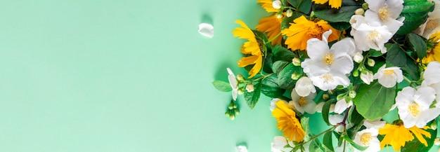 Wiosna transparent. rama kwiat na tle mięty, widok z góry.
