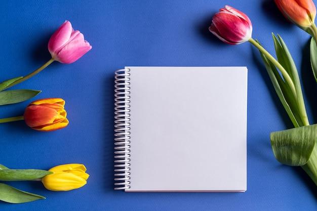 Wiosna tulipan kwitnie i notatnik dla teksta na jaskrawym błękitnym tle. leżał płasko, kopia przestrzeń.