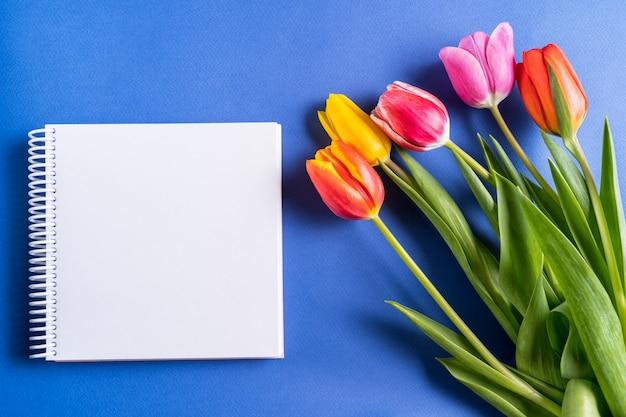 Wiosna tulipan kwitnie i notatnik dla teksta na jaskrawym błękitnym tle