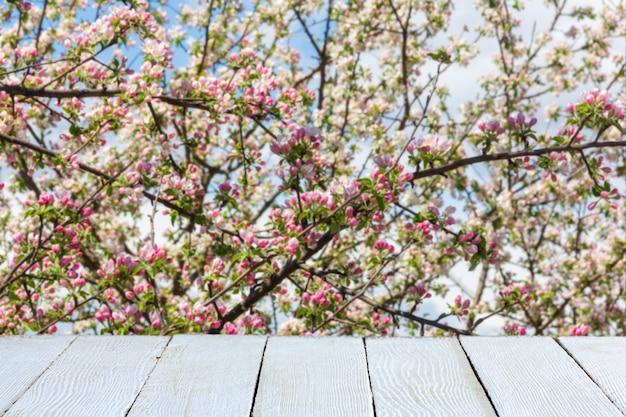Wiosna z kwitnącą jabłonią i białymi drewnianymi deskami do ekspozycji produktów
