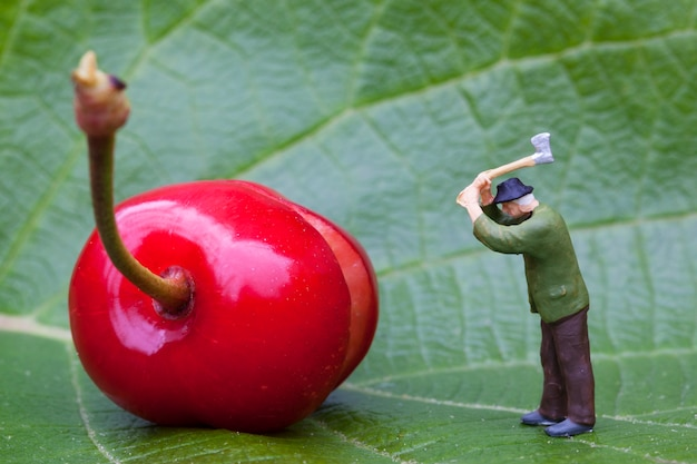 Wiśnia i figurka drwal na liściu