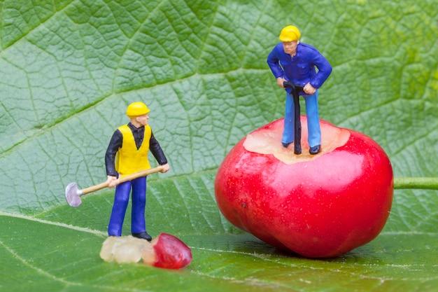 Wiśnia i figurka robotników na liściu