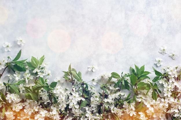 Wiśniowe kwiaty na drewniane pastelowe tło z bokeh światła widok z góry, miejsce. mieszkanie leżało z wiosennymi kwiatami, witaj wiosnę w naturalnych pastelowych kolorach z bokeh