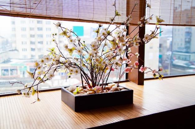 Wiśniowe kwiaty (sakura) w pobliżu okna