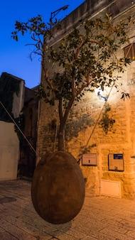 Wiszące drzewo pomarańczowe w starej jaffie w nocy, tel awiw, izrael. symbol narodu żydowskiego wyrwanego z ojczyzny.