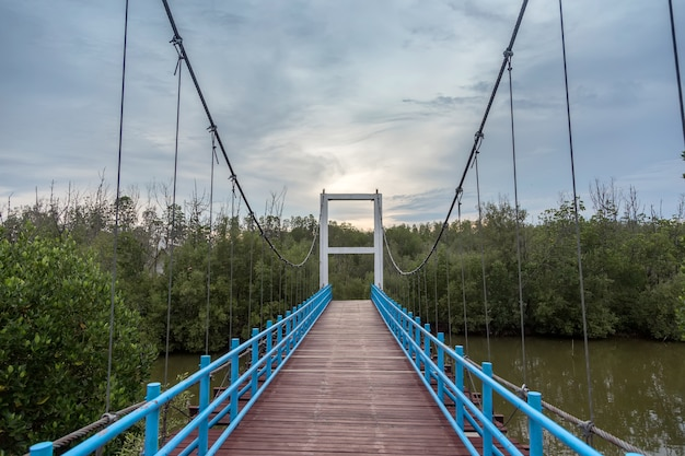 Wiszący most na wodzie, aby przejść przez wodny krajobraz