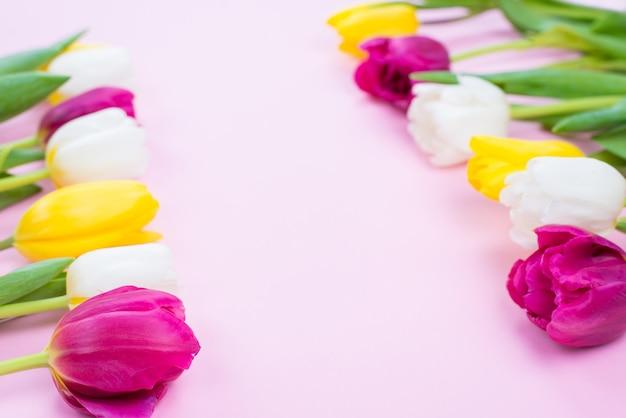 Witaj wiosno! przycięte zdjęcie z bliska piękne kolorowe tulipany z zielonymi liśćmi leżącymi na białym tle na pastelowym tle