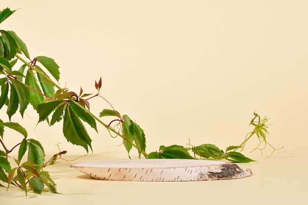 Witryna wykonana z naturalnego drewna brzozowego i bluszczowego. podium do prezentacji towarów i kosmetyków wykonane jest z drewna na beżowym tle. minimalistyczna scena brandingowa.