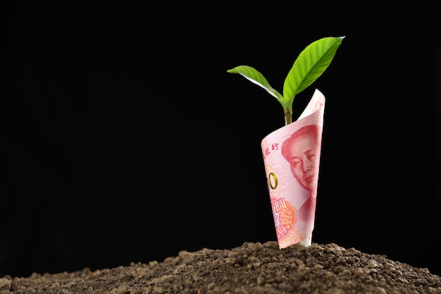 Wizerunek chińskiego juana banknot z rośliny dorośnięciem na wierzchołku dla biznesu, oszczędzanie, wzrost, ekonomiczny pojęcie