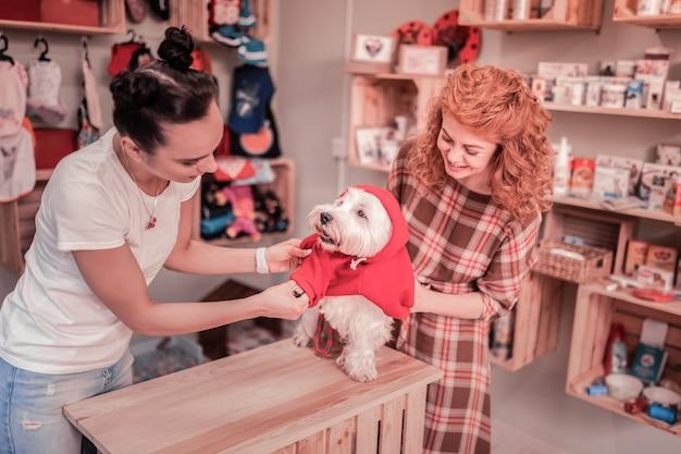 Właściciel czuje się podekscytowany. ruda piękna właścicielka psa podekscytowana zakupem dla niego ubrania