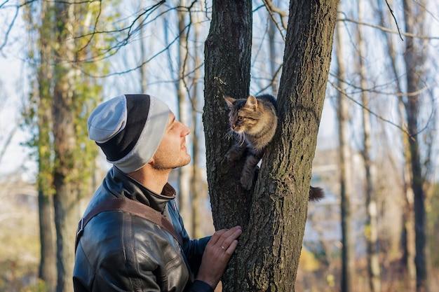 Właściciel patrzy na kota na drzewie