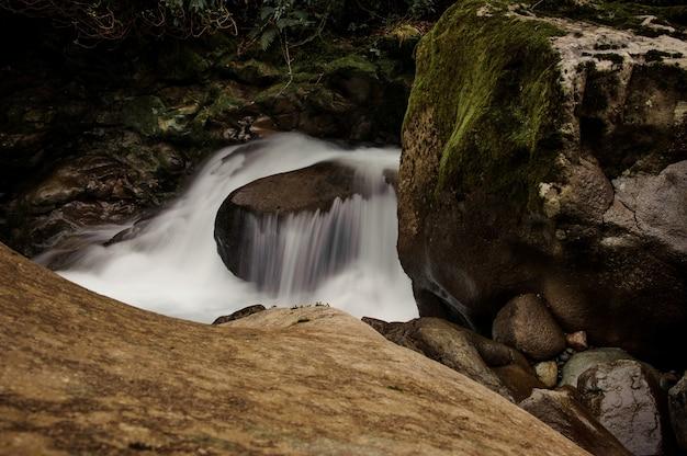 Woda spadająca z porośniętego mchem kamienia pod bujnymi liśćmi w łaźniach afrodyty w gruzji
