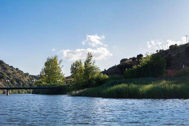 Woda z rzeki poprzecinanej mostem i otoczonej drzewami oświetlonymi światłem słonecznym