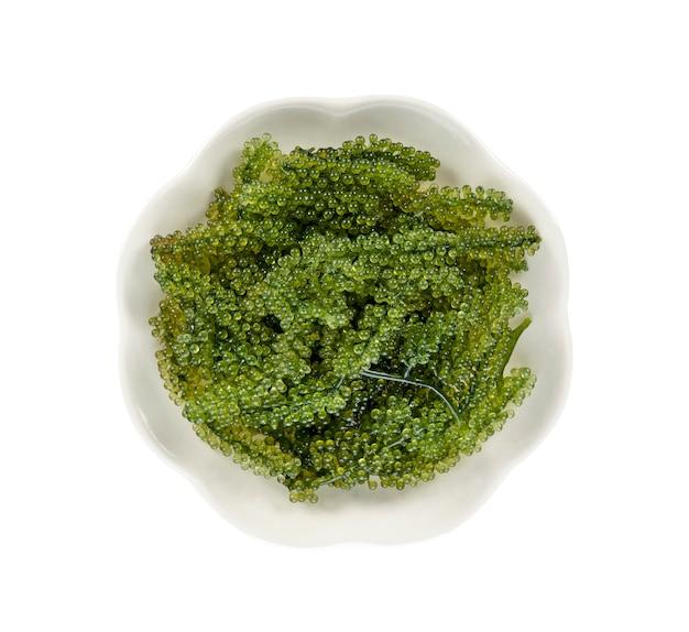 Wodorosty morskie winogron (zielony kawior) na białym tle