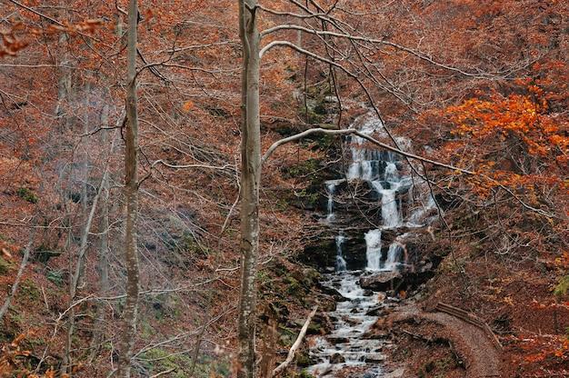 Wodospad borzhava z dymem z ognia pod górskim miasteczkiem ośrodek narciarski pylypets w lesie jesienią