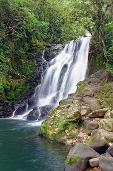 Wodospad cascada de texolo w xico w meksyku