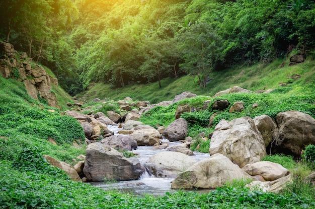 Wodospad dżungli miękka woda strumienia w parku przyrody