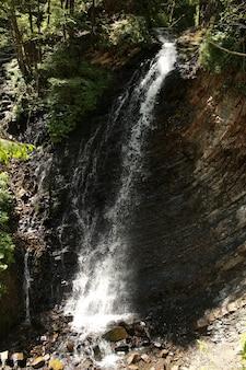 Wodospad. górski wodospad w parku