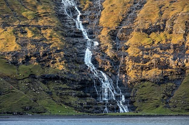 Wodospad i stado owiec. jesień we wsi saksun. streymoy, wyspy owcze