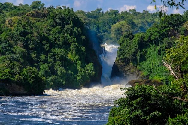 Wodospad pośrodku klifów z drzewami i roślinami w słoneczny dzień