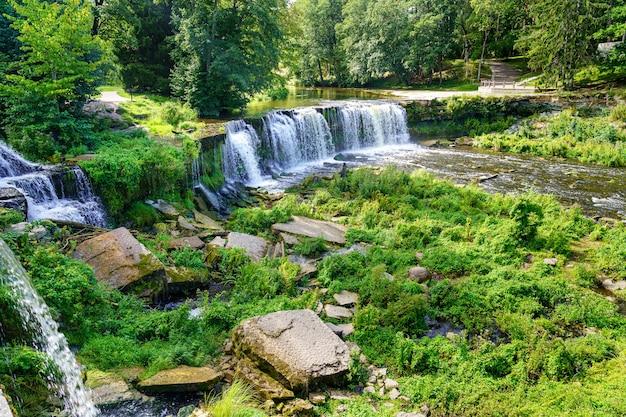 Wodospad rzeczny w zielonym lesie z bujną roślinnością i słoneczny dzień.