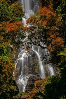 Wodospad sunantha z jesiennego drzewa w prowincji nakhon si thammarat, tajlandia.